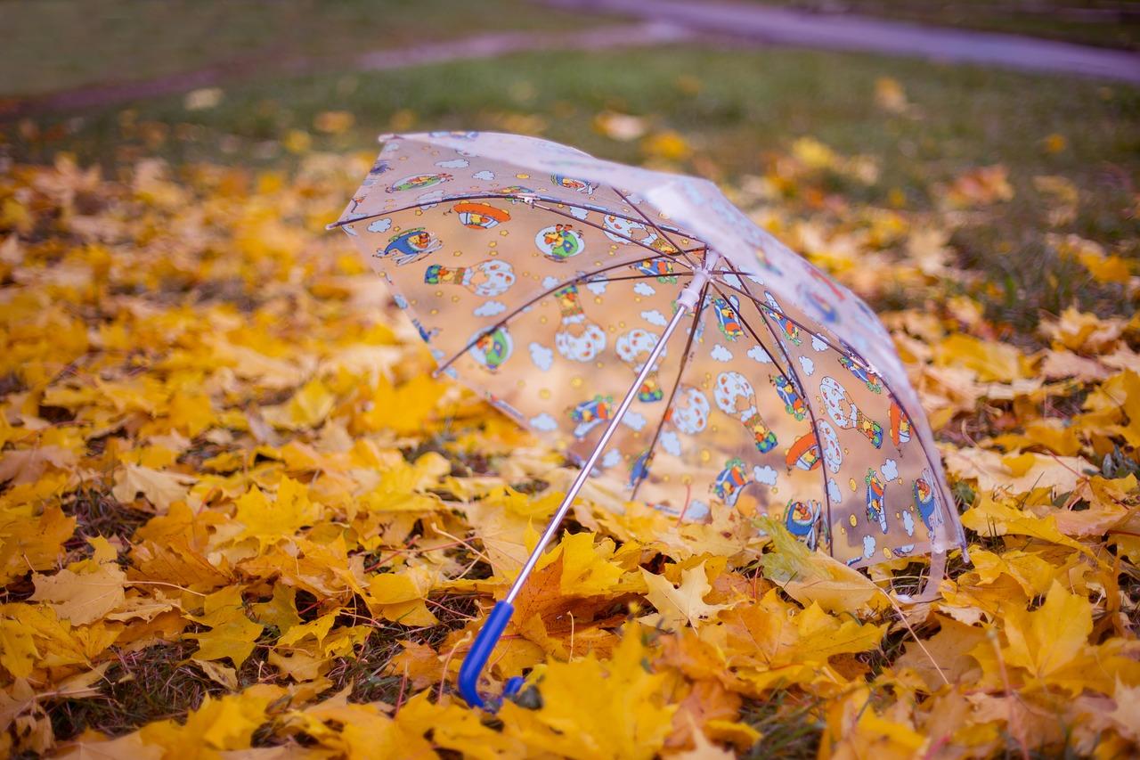 Час парасольок