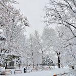 Снігова казка