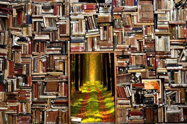 Сад, книги